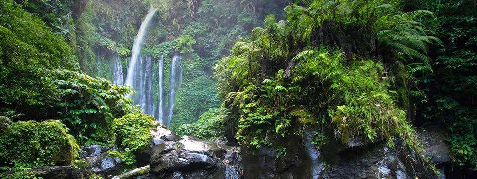 Waterfall in the jungle: css html image slideshow