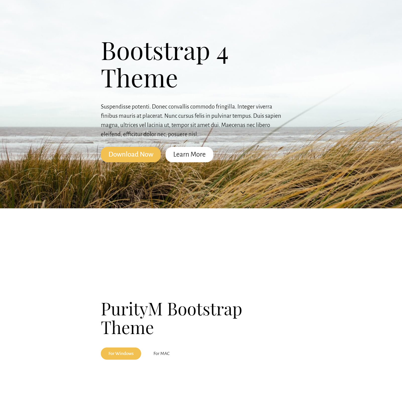 CSS3 Bootstrap 4 Themes