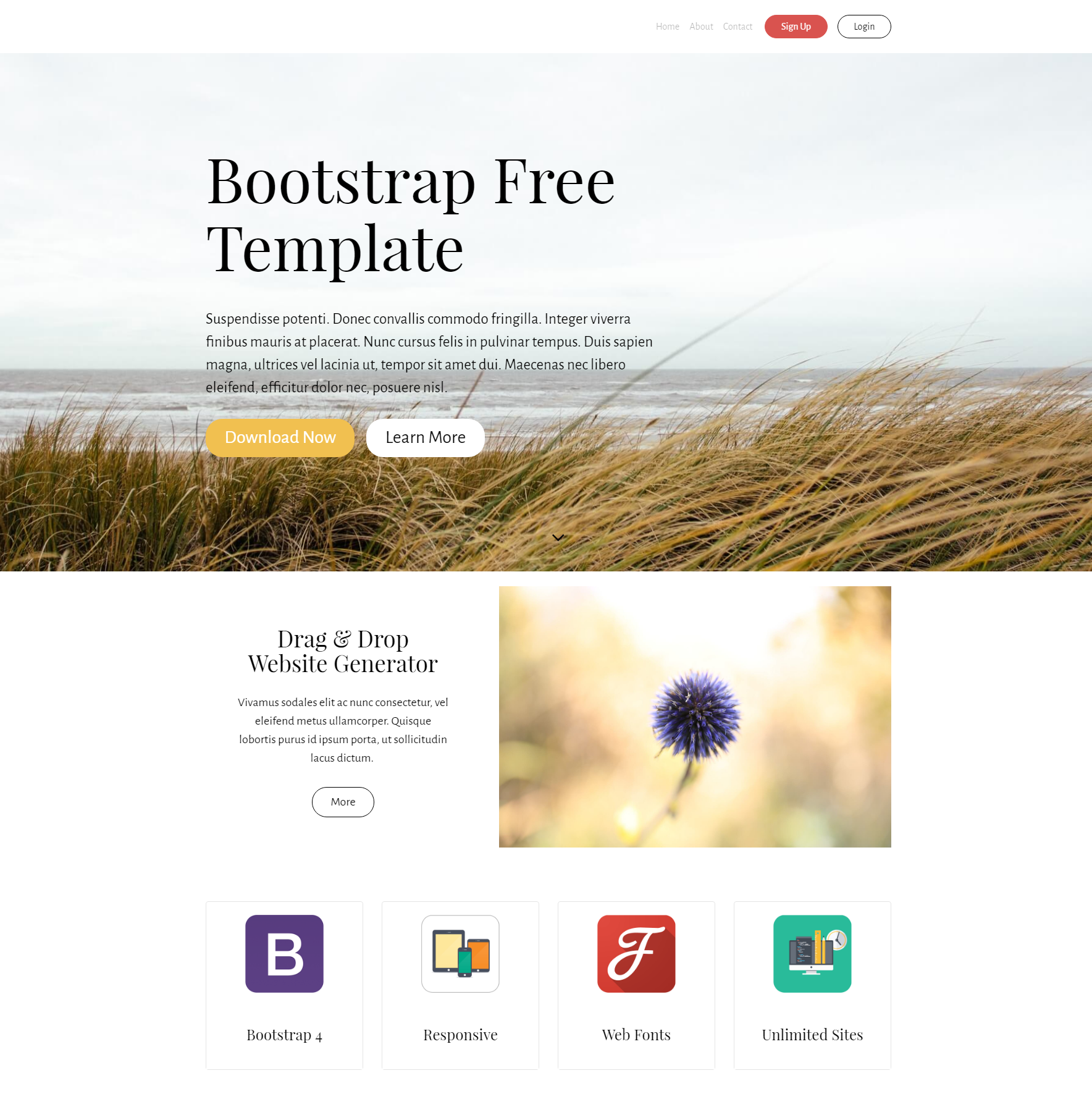 CSS3 Bootstrap Free Themes