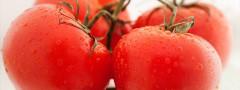 Fruit or Veg