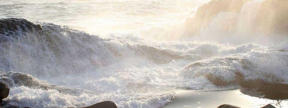 sea fight best wordpress gallery plugin