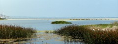 Malibu lagoon image gallery css