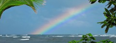 ocean rainbow responsive photo gallery css