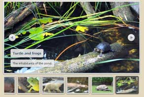 jQuery image rotator thumbnails