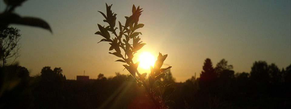 Sun html gallery plugin