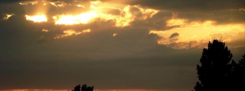 Cloud photo gallery app