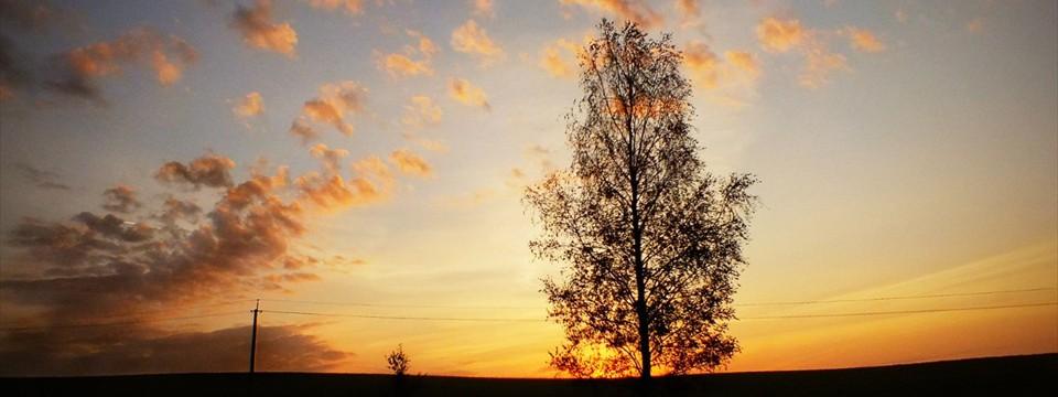 Amazing landscape photo gallery software