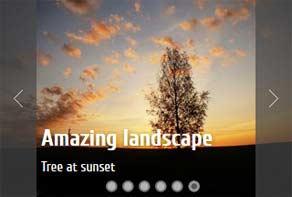 Fotogalerie for Website