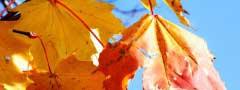 html5 photo slider