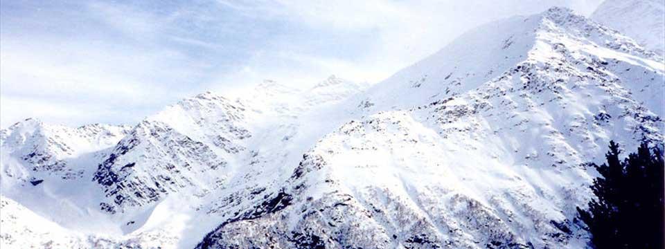 Elbrus mountain wordpress plugins change color