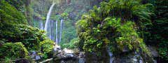Waterfall in the jungle image slideshow html css