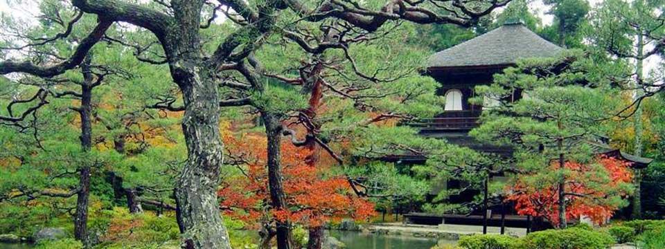 Japanese garden online banner maker