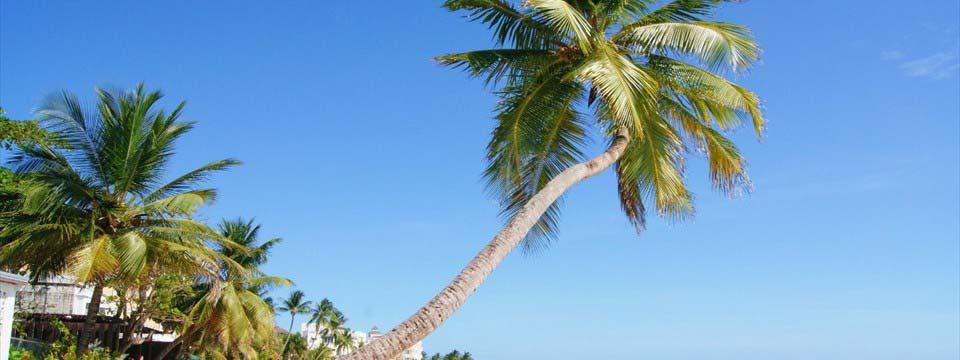 Worthing Bay photo slideshow software free download