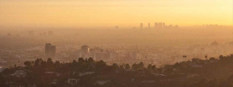 Los Angeles carousal exapmles rotator lite