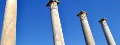 Columns gallery image slider