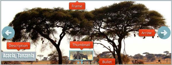 Slideshow creator software