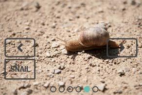 Javascript image slider example